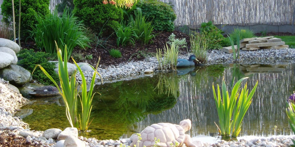 Záhrada s jazierkom