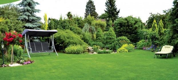 Záhrada, ktorá sa premenila