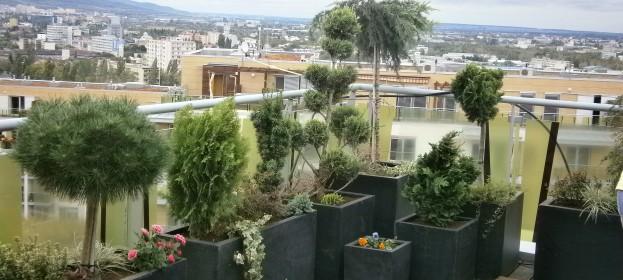 Záhrada na terase