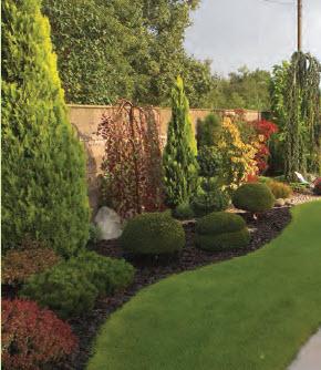 zahradaAtrio2